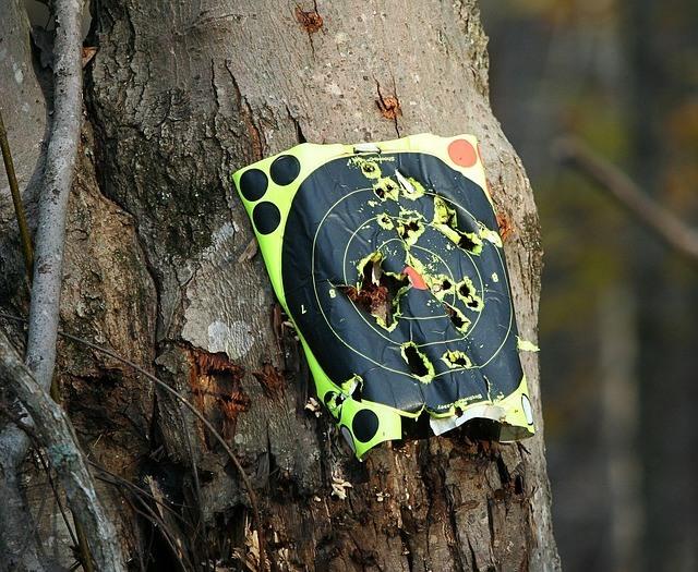 target-practice-65647_640