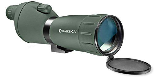 rifle scope review of the vortex viper